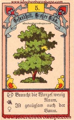 Der Baum im Wochenhoroskop für diesen Tag