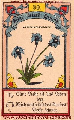 Die Lilien im Wochenhoroskop für diesen Tag